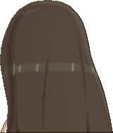 Pokemon Sun Hairstyle Girl Long Straight Straight Dark Brown (back)